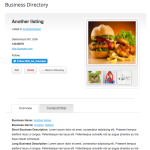 Business Directory Plugin Theme