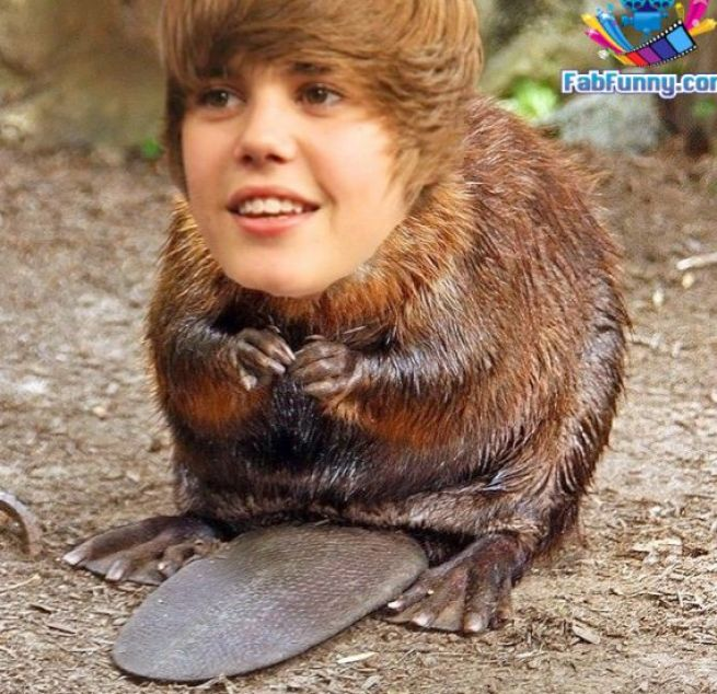It's...Justin BEAVER!